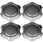 Four Silver Wheel Center Caps (Dorman# 909-111)